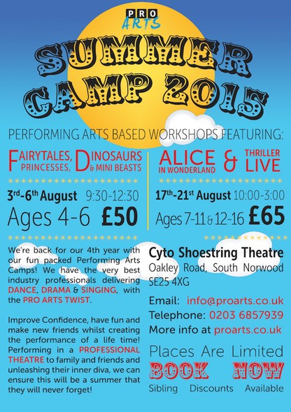 Pro+Arts-summer+camp+2015+flyer-web